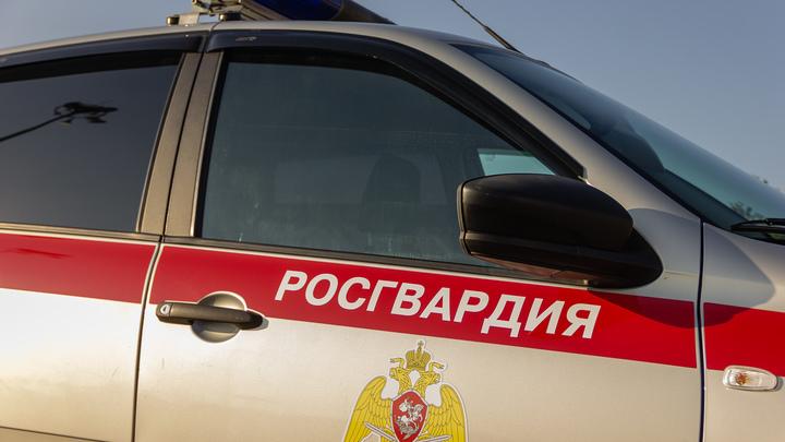 В Ростове-на-Дону подрядчик украл 2,5 млн рублей при ремонте катеров Росгвардии