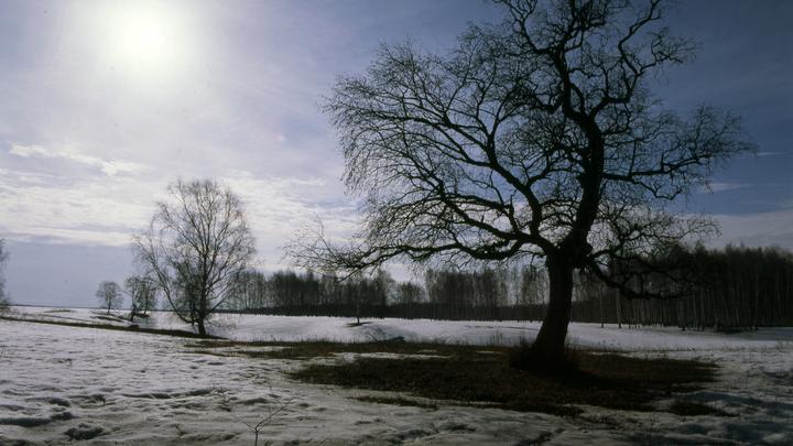 В Роструде напомнили гражданам, почему 25 февраля не будет выходным днем