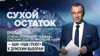Пронько: Отмена пенсионной реформы, списание долгов, обнуление НДФЛ – нам уши греют к думским выборам