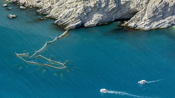 Любуются красотами Крымского моста: Самолеты США замечены в небе над Черным морем