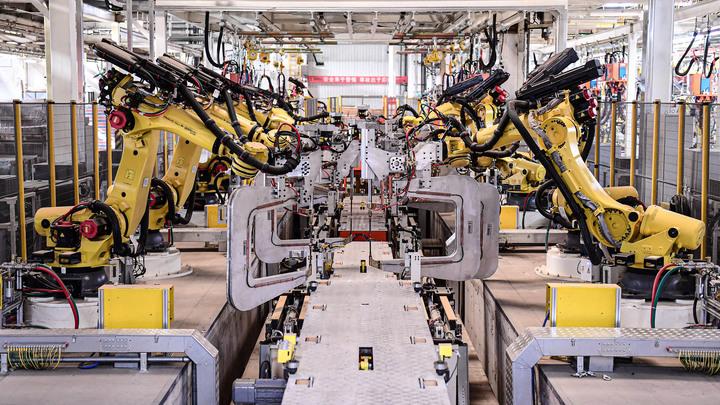 Не пьют, не прогуливают и пенсию платить не надо: Людей планируют заменить роботами