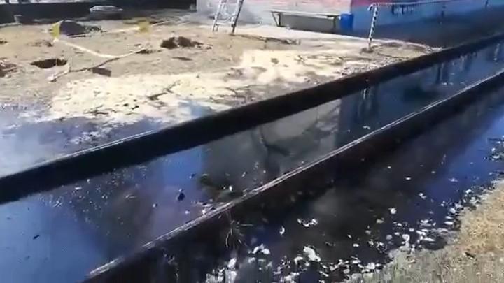 Видео: три тонны мазута разлилось на железнодорожных путях в Ленобласти