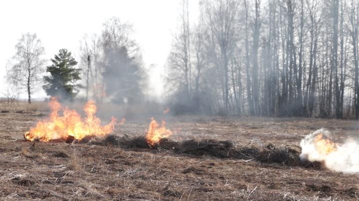 За сутки во Владимирской области произошло 53 травяных пожара