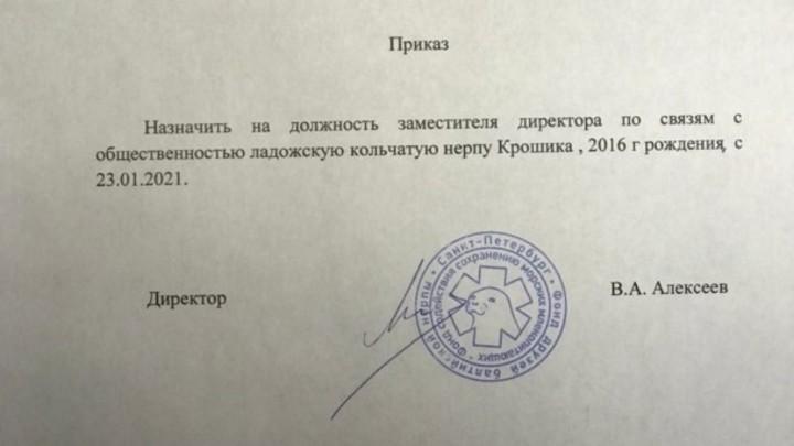 Такие политики нам нужны: нерпа Крошик получил новую должность после знакомства с депутатом