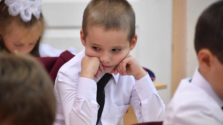Интересно, оно не шевелится?: В Омске испугались синего омлета, поданного школьникам - фото