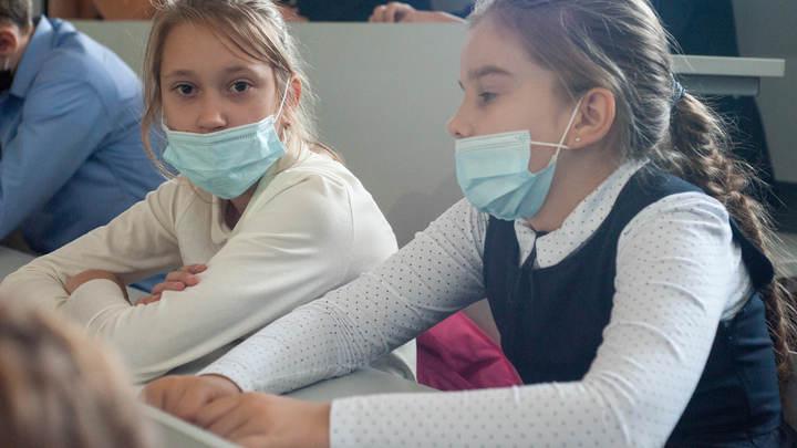 Более 75 % опрошенных высказались против «дистанционки» в школах Санкт-Петербурга