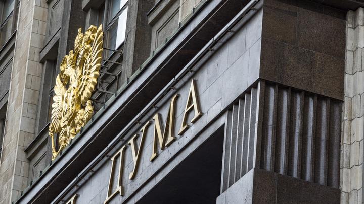 Коррупционеров кастрировать, причём за их счёт: В Госдуму идут защитники русских