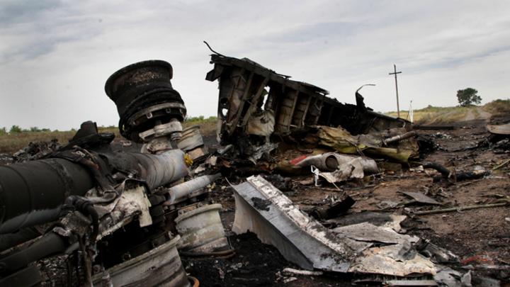 Виновника гибели MH17 «помогли» найти соцсети