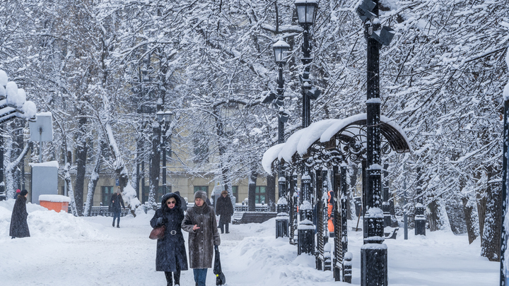 Снегопад принес в Москву потепление