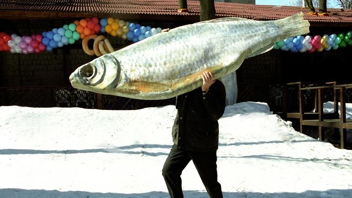 Самая полезная и недорогая: Доктор Мясников назвал идеальную рыбу