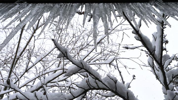 Короче, замёрзло всё!: Жительницу Подмосковья замуровал дома… мороз