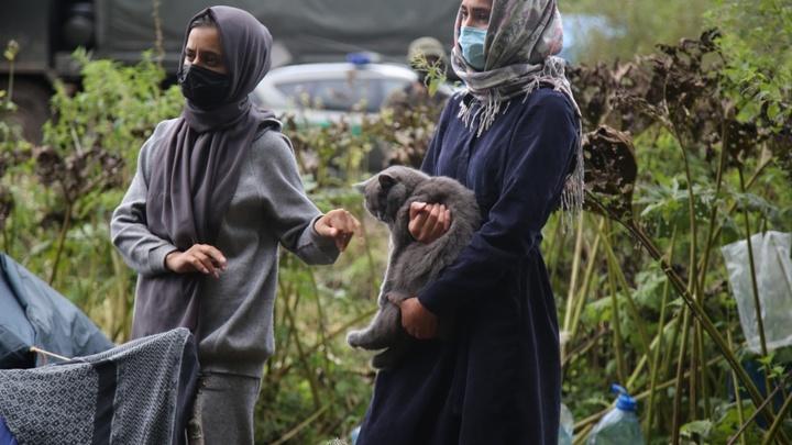 Беларусь отменяет реадмиссию и даёт зелёный свет нелегальным мигрантам, рвущимся в ЕС
