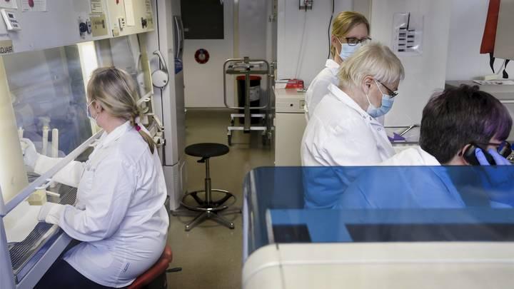 Резервуар заразы в человеке. Учёные подтвердили самые смелые догадки о COVID-19