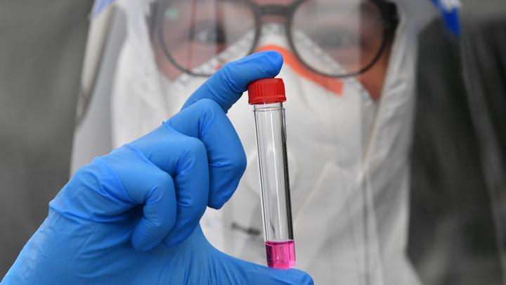 Мутирует себе в ущерб: Итальянские медики заявили о капитуляции коронавируса