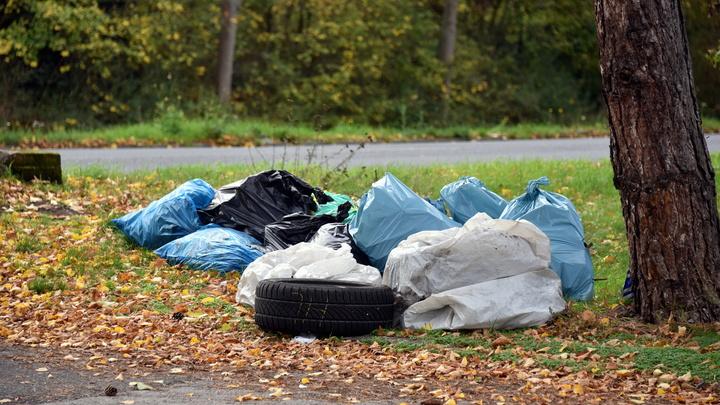 Кто будет вывозить мусор: Новосибирский регоператор расторг контракты с двумя перевозчиками