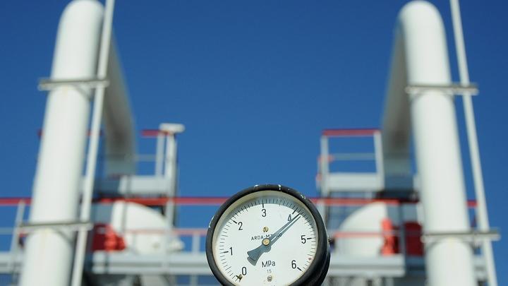 Украина отчиталась о том, сколько газа купила в ЕС
