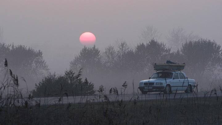 На Ростовскую область надвигаются шквалистый ветер и заморозки