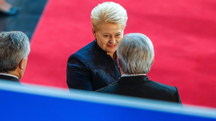 Президент Литвы углядела в Белорусской АЭС угрозу всему миру и США