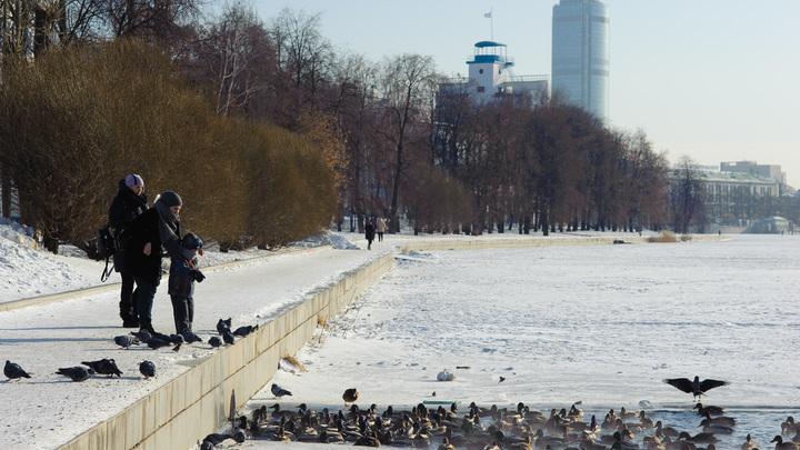 В Москве пять человек провалились под лед: поиски продолжаются