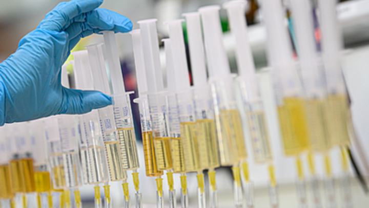 Спасёт от онкологии? Российские учёные обнаружили универсальный антибиотик