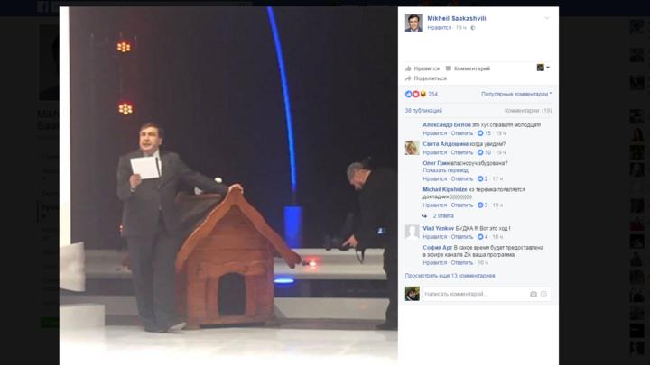 У собачьей будки: Саакашвили нашел себе новое место под солнцем