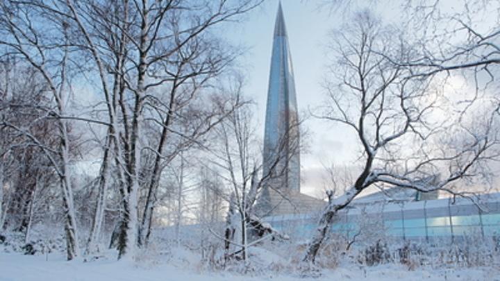Погода в январе пощадит не всех: Где в России не стоит ждать мягкой зимы, рассказали синоптики
