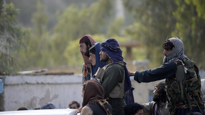 Талибан* заявил о разоружении своих боевиков на фоне смертельной стрельбы в воздух