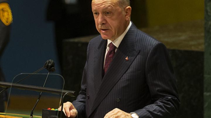 Востоковед заявил о грубой ошибке России с Эрдоганом
