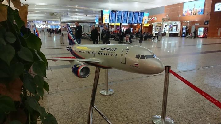 Тяни вверх!: Boeing 737 чуть не врезался в землю в Москве - СМИ