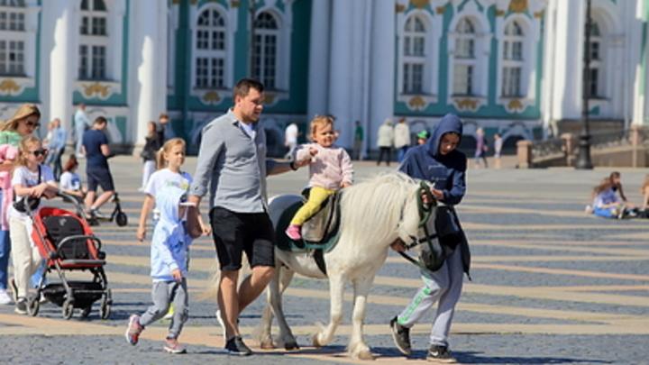 Мошенники обманывают жителей России через клоны туристических фирм и Telegram
