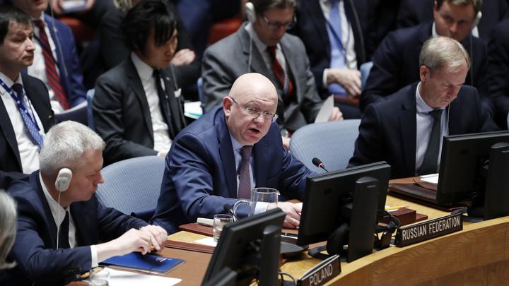 Последнее средство дипломатии: Небензя поцеловал Никки Хейли перед заседанием Совбеза ООН - видео