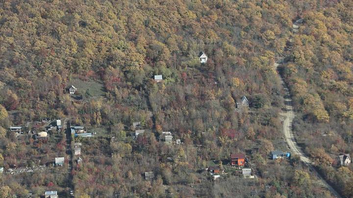 Осваивают лес: Где в Краснодарском крае нашли больше всего незаконных построек