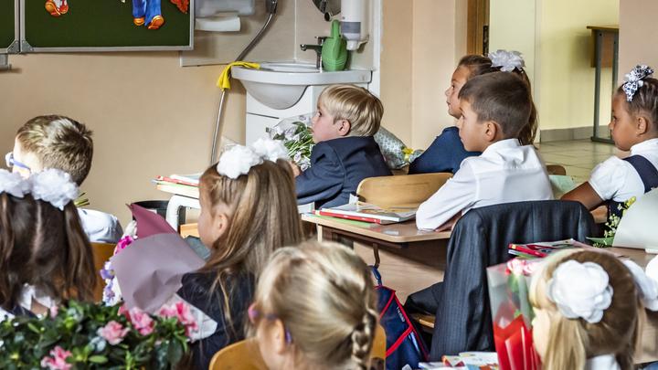 Запись начнется в апреле: мэрия Екатеринбурга обновила список школ по прописке