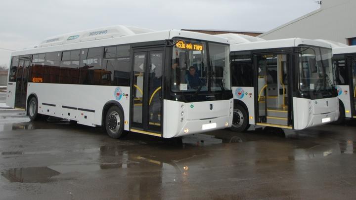 После Нового года может подорожать проезд в общественном транспорте Ростовской области