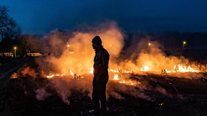 Норвежская Ванга молила, но её не слушали: Мигранты несут войну