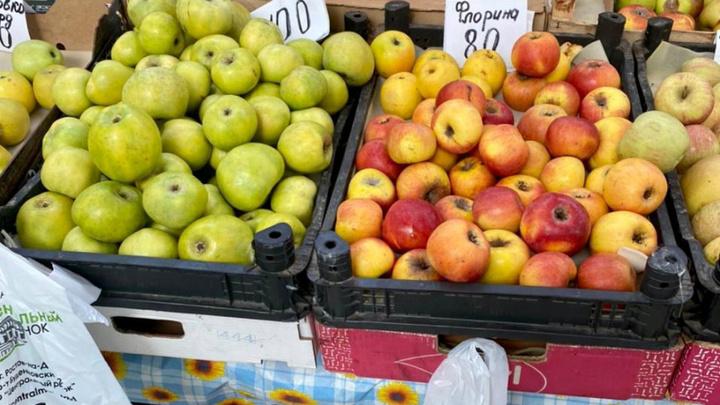Ростовчанам рассказали, где купить самые дешёвые в городе овощи и фрукты. Поверили не все