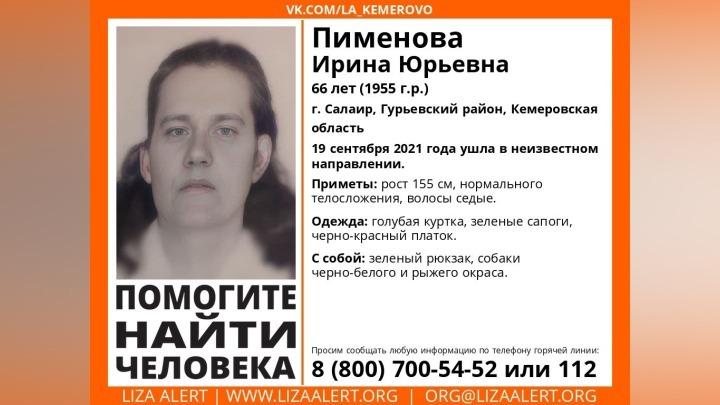 Женщина с двумя собаками пропала в Кузбассе