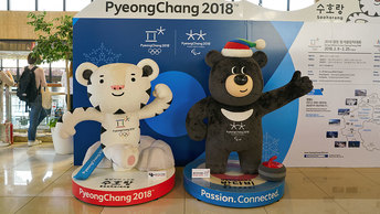 На Олимпиаду - не ехать