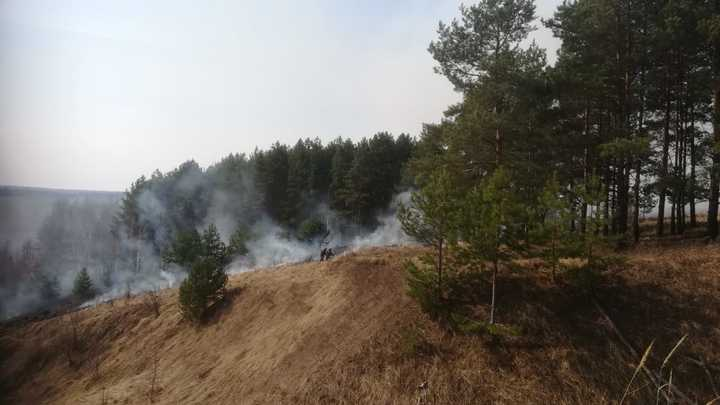 В Нижегородской области введён особый противопожарный режим