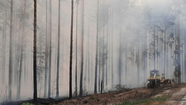 На Кубани штормовое предупреждение по высокой пожароопасности продлили до 1 сентября