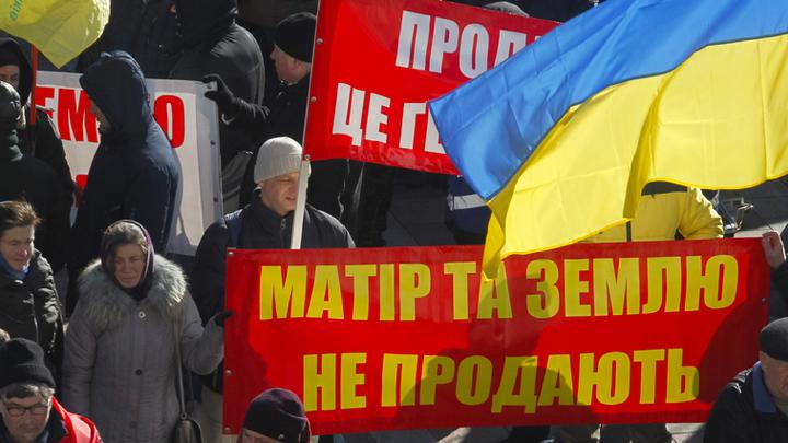 Хитрее чёрта, но глупей вороны: Самые дурацкие предложения Украины