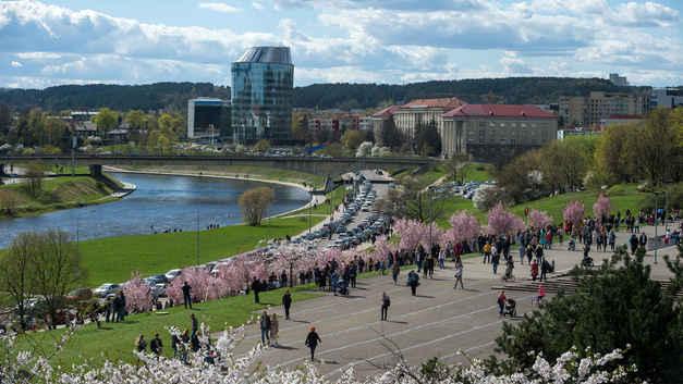 Лимитроф - это судьба: Гаспарян высмеял попытки Литвы угнаться за США