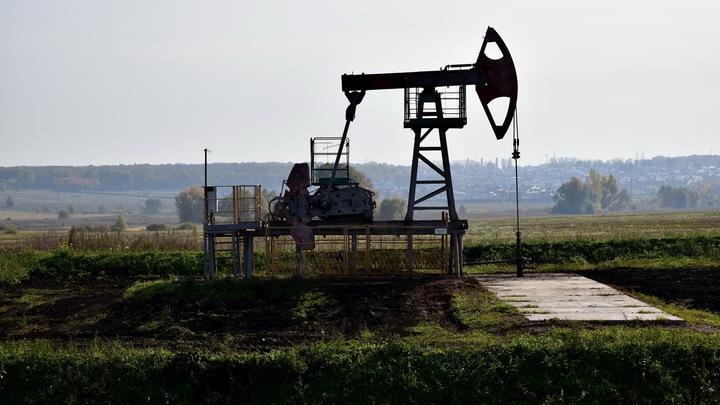 Юшков посоветовал Чубайсу не спешить хоронить нефтяную лошадь: Чёрное золото нескоро уйдёт с рынка