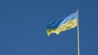 дали ли кредит украине займы аффилированным компаниям