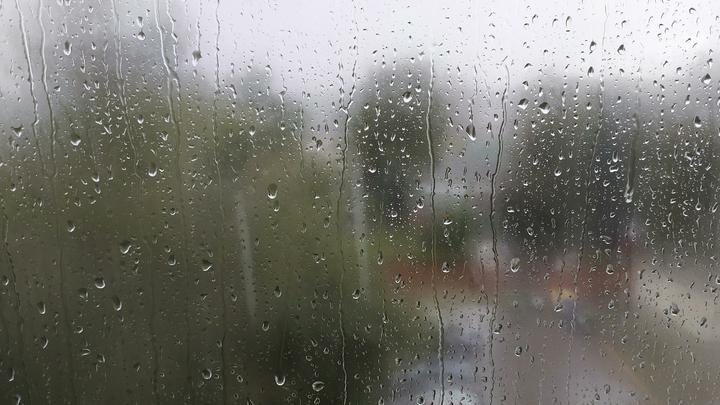 В Беларуси в субботу из-за ливней объявлен оранжевый уровень опасности