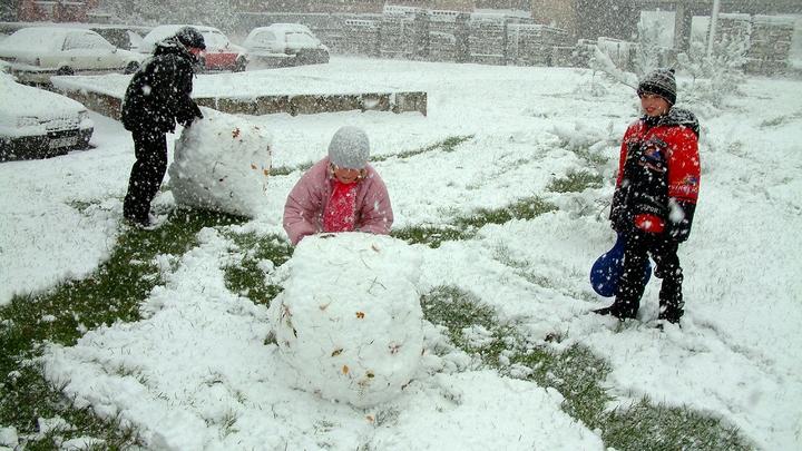 Природе пока не до сна: Главный синоптик ответил на вопрос о снеге в Москве