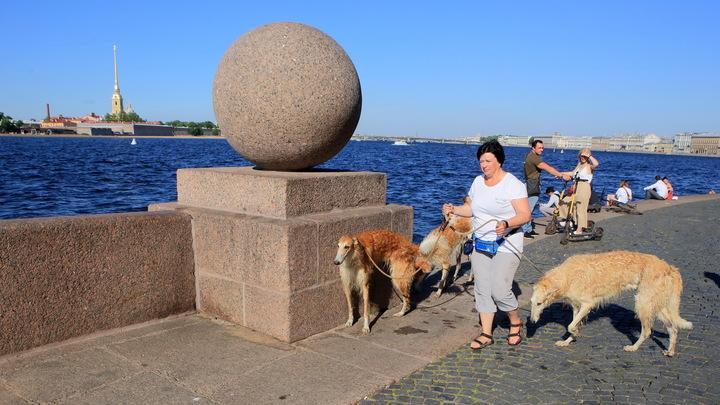 Санкт-Петербург назван лучшим городом России для ведения гостиничного бизнеса