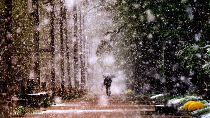 Кто как, а метеорологи погодой удовлетворены