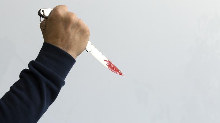 Жителя Солнечногорска обвиняют в убийстве школьника