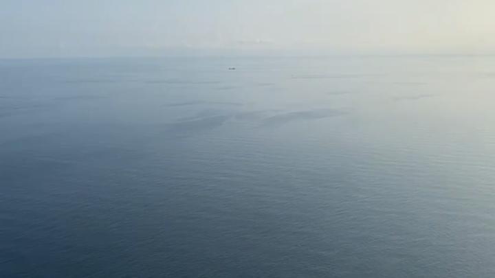 Я не я, и нефть не моя: КТК заявляет, что пятно в Черном море появилось не от разлива нефти